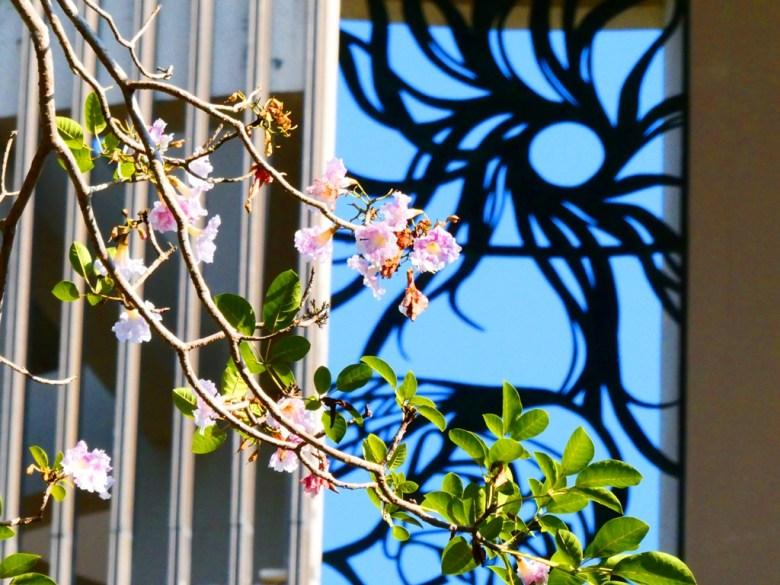 射日塔 | 洋紅風鈴木 | 自然與現代建築之美 | 嘉義神社遺跡 | 嘉義公園 | 和風巡禮 | 巡日旅行攝