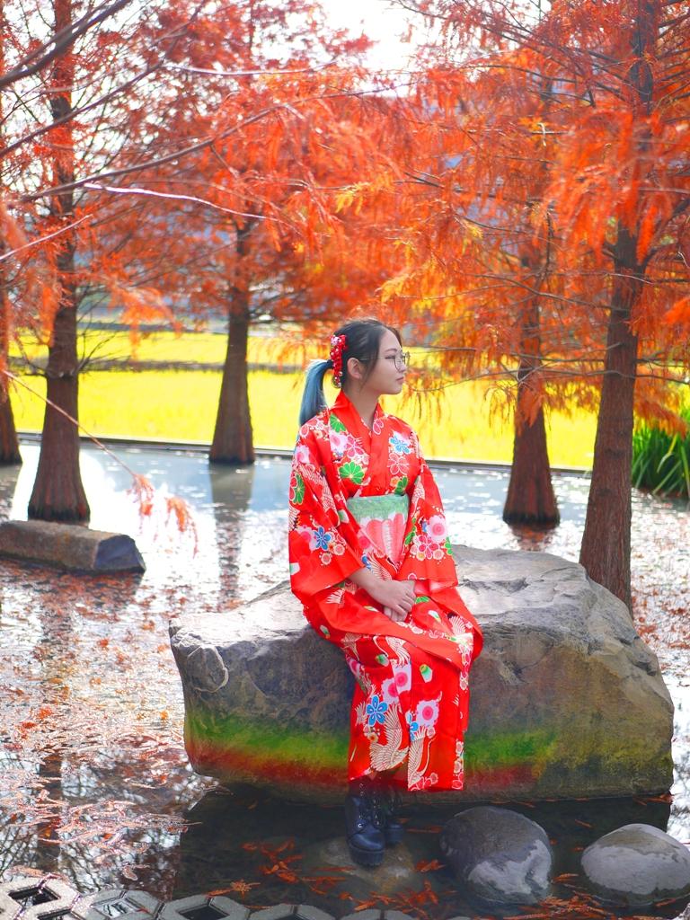 落羽松 | 落羽杉 | 一抹虹光 | 大紅和服 | 日本味 | 網美景點 | Taian | Miaoli | RoundtripJp