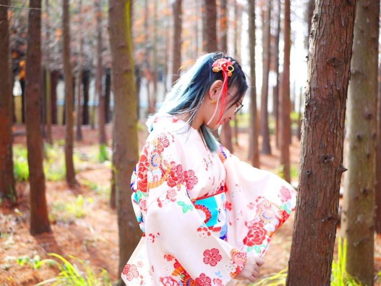樹海 | 和服 | 日本味 | 和風 | Dadu | Taichung | Wafu Taiwan | 巡日旅行攝