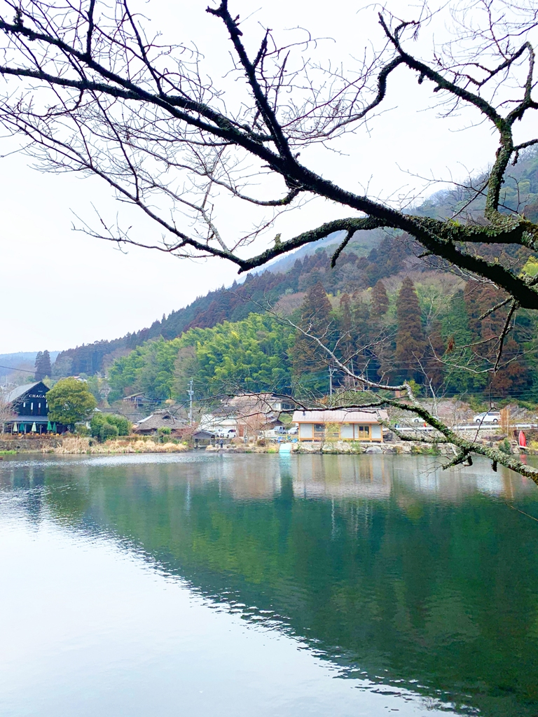 Colorful Japan   金鱗湖   大分   Blue attractions   TOP10   RoundtripJp