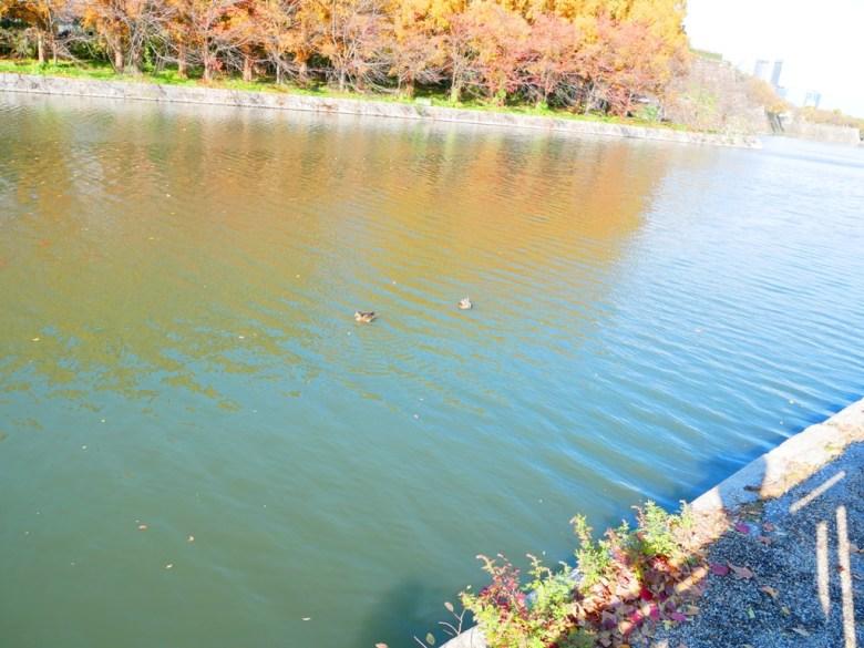 多彩日本   大阪城公園   大阪   日本景點   TOP10   巡日旅行攝