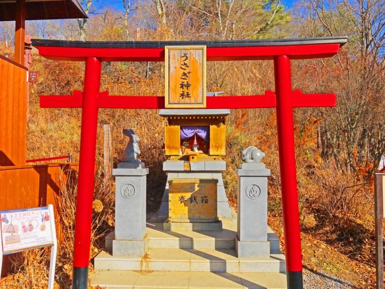 多彩日本 | 富士山天上山公園 | 山梨 | 日本可愛景點10選 | 巡日旅行攝