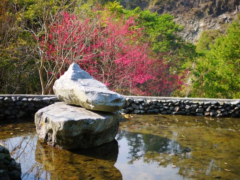 清池與奇石 | 水的清澈 | 山櫻與綠樹之美 | 八仙山國家森林遊樂區 | Basianshan National Forest Recreation Area | 巡日旅行攝