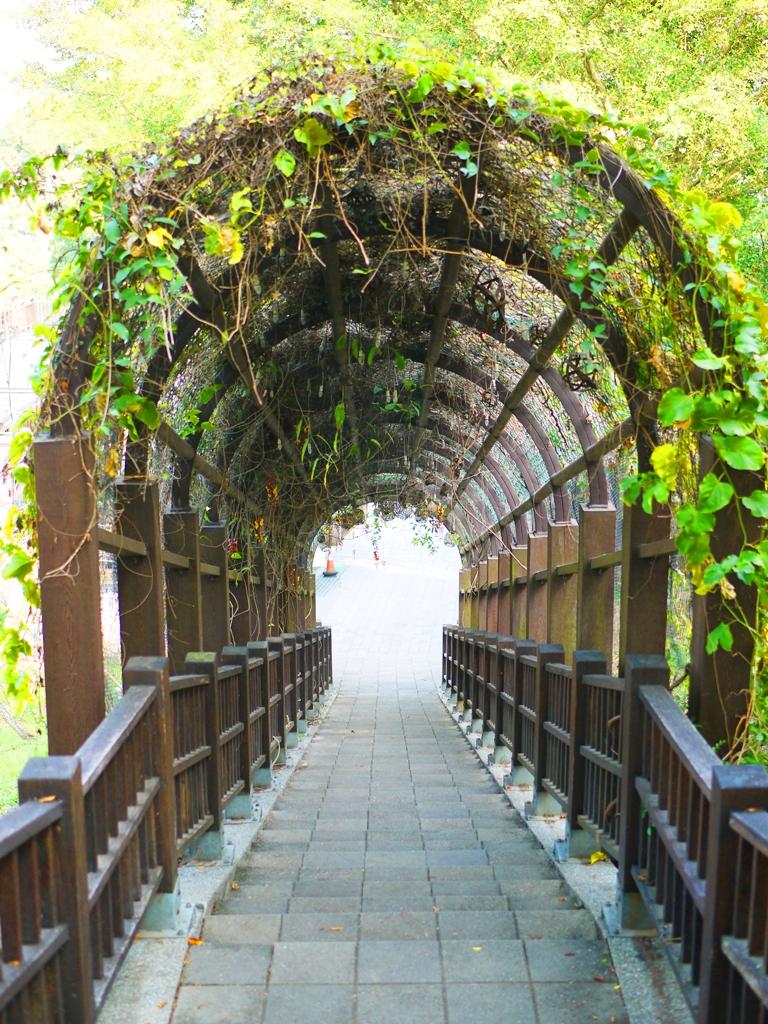 布滿藤蔓的綠色隧道 | 往前是廣場與美食小吃攤販區 | メイシャンこうえん | Meishan Park | 巡日旅行攝