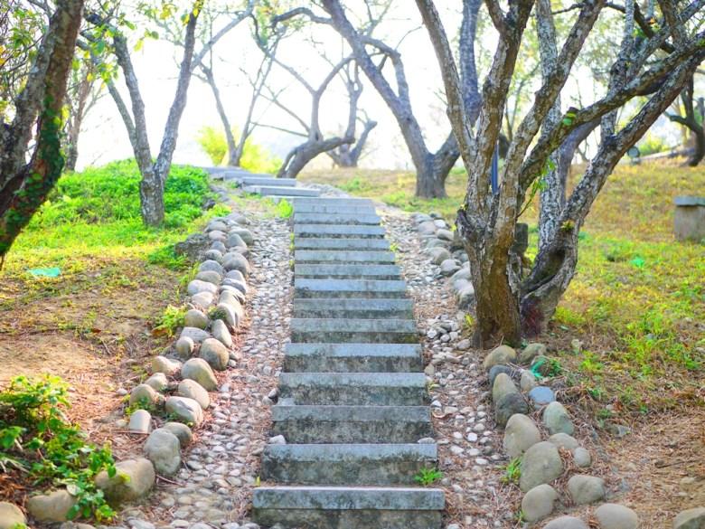 充滿自然與原始的步道 | 梅山公園 | メイシャンこうえん | Meishan Park | 梅山 | 嘉義 | RoundtripJp