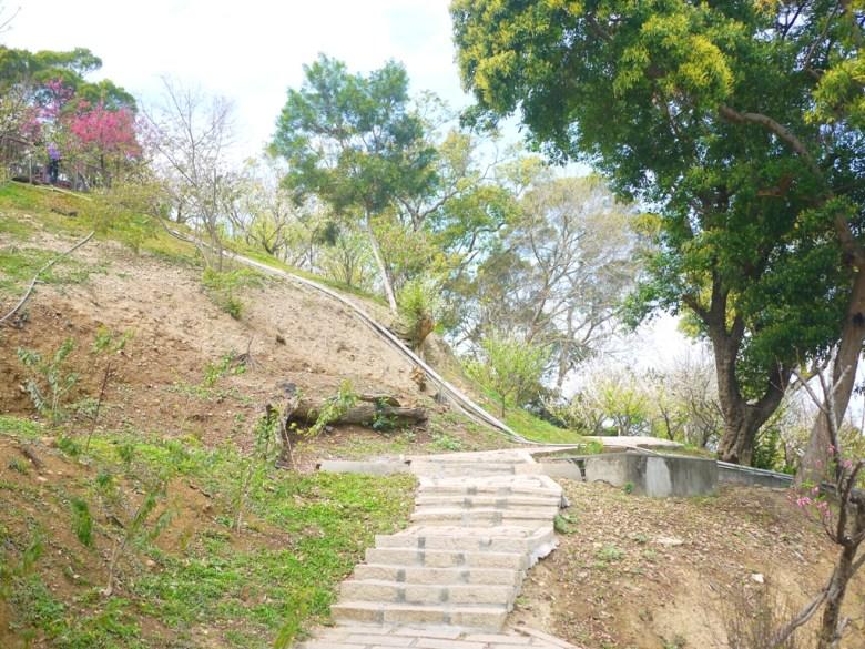 空曠的山坡地 | 古樸的石階 | 青山綠樹 | 空氣清新 | 虎山巖 | 花壇 | 彰化 | 巡日旅行攝