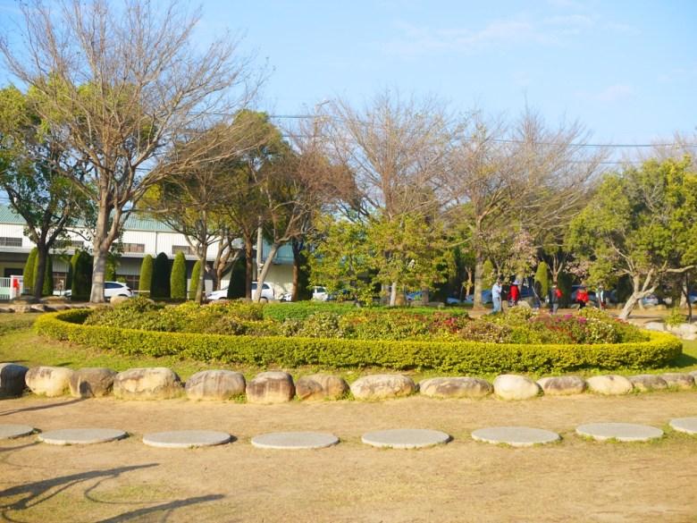 大片的綠草植栽 | 清新自然 | 臺灣旅人 | 台中后里櫻花公園 | Houli | Taichung | RoundtripJp