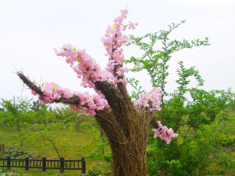 美麗櫻花裝置藝術 | 河津櫻裝置藝術 | 櫻花公園 | 日式公園 ルーグー | Lugu | Nantou | RoundtripJp