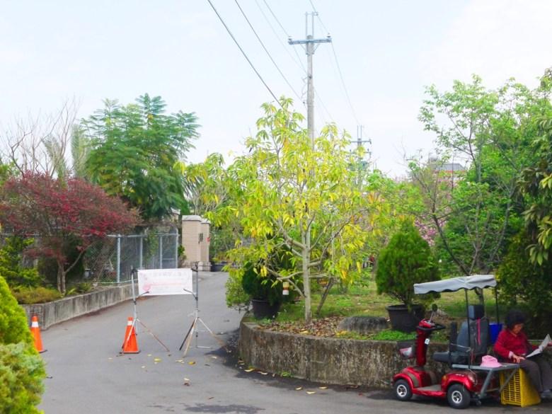 富士櫻櫻花秘境入口 | 民宅巷弄內 | 富士櫻の櫻花秘境 | 新社 | 台中 | 巡日旅行攝