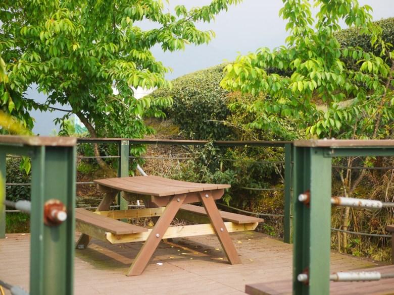 茶園步道觀景台 | 鳥瞰滿山遍野的茶園 | 鳥瞰竹山山林之美 | 南投茶鄉 | Zhushan | Nantou | RoundtripJp