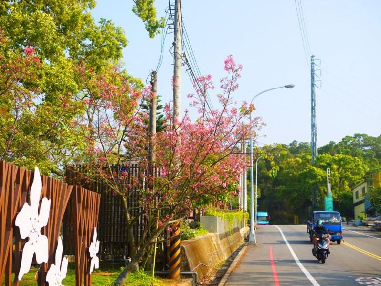 銅鑼環保公園 | 櫻花公園 | 銅鑼 | 苗栗 | トンルオ | ミアオリー | Tongluo | Miaoli | 巡日旅行攝