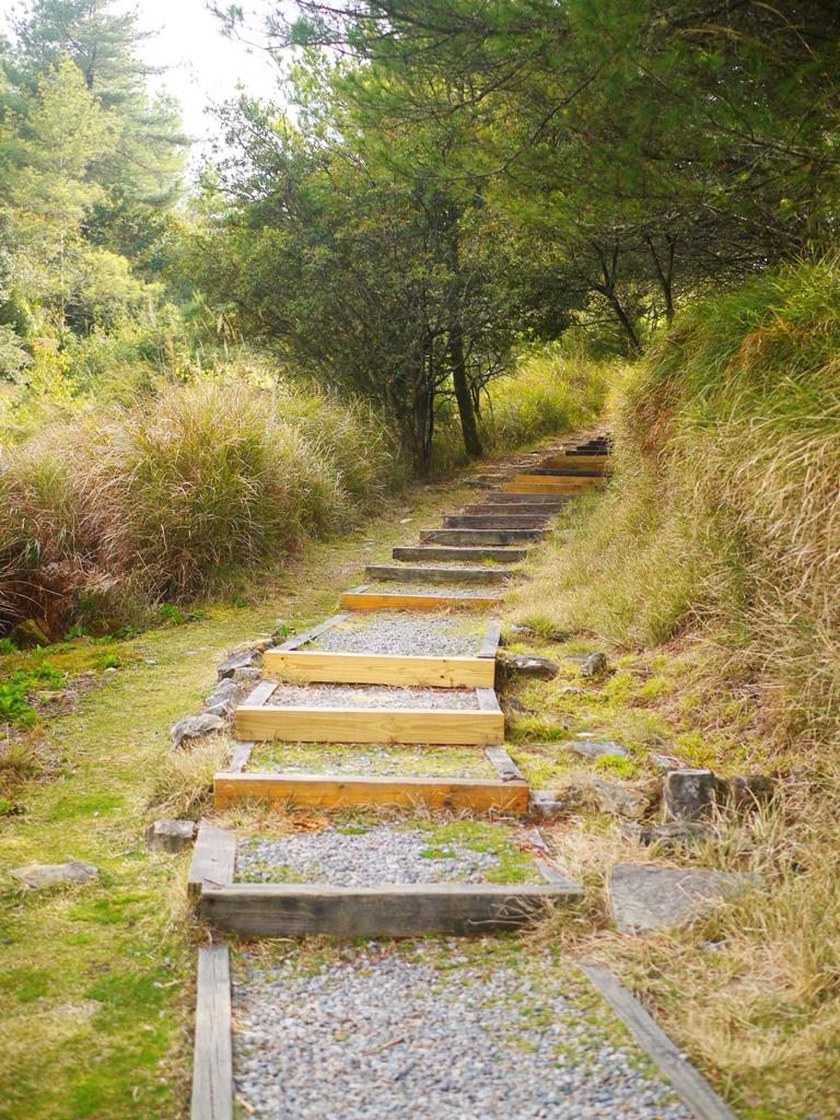 天池旁步道 | 海拔2,600公尺之上 | 大雪山 | 大雪山國家森林遊樂區 | 和平 | 台中 | RoundtripJp