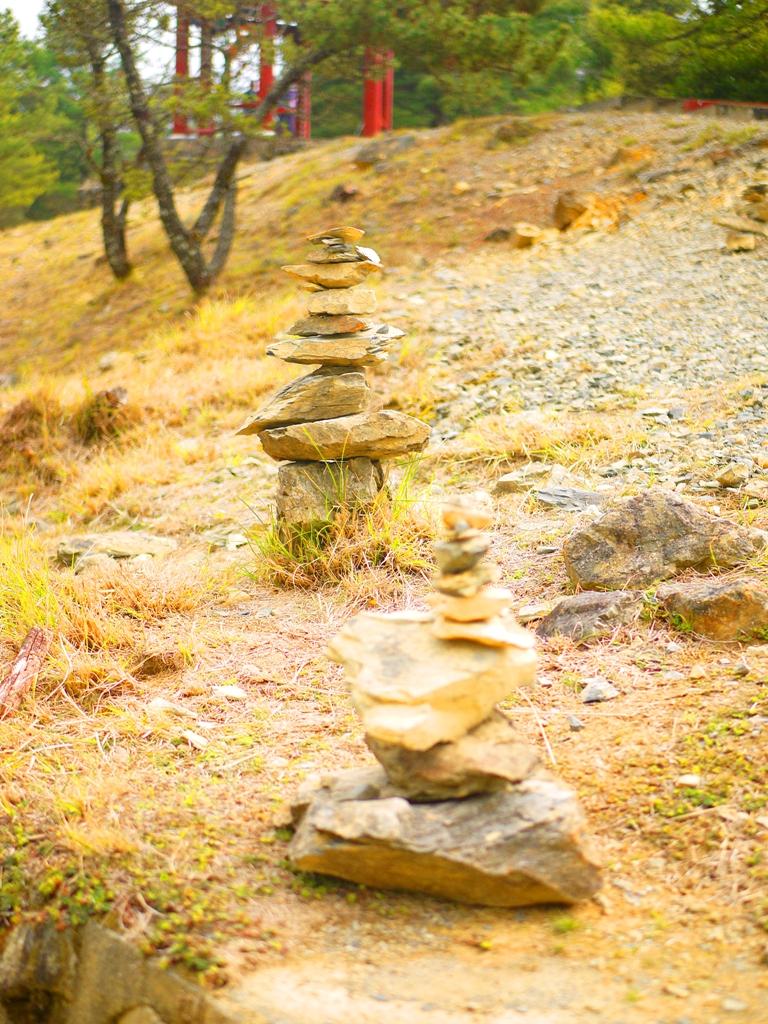 天池旁的奇特石頭景觀 | 大雪山 | 大雪山國家森林遊樂區 | 和平 | 台中 | 巡日旅行攝