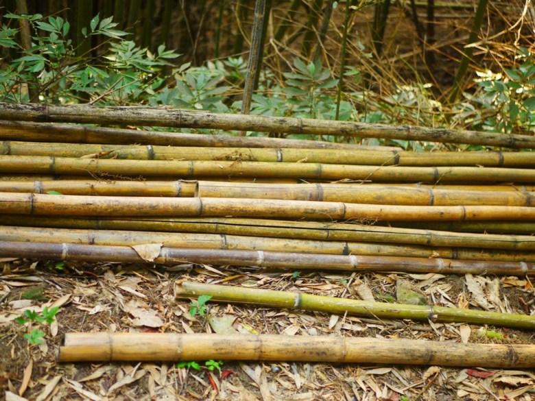 竹林小徑一隅 | 滿滿竹子的世界 | 烏嘎彥竹林 | 泰安 | 苗栗 | RoundtripJp