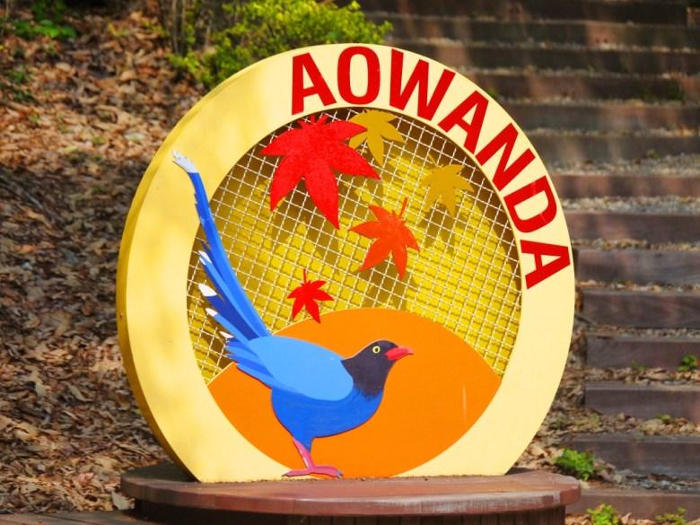 AOWANDA形象 | 楓葉的故鄉 | 奧萬大國家森林遊樂區 | レンアイ | ナントウ | 巡日旅行攝