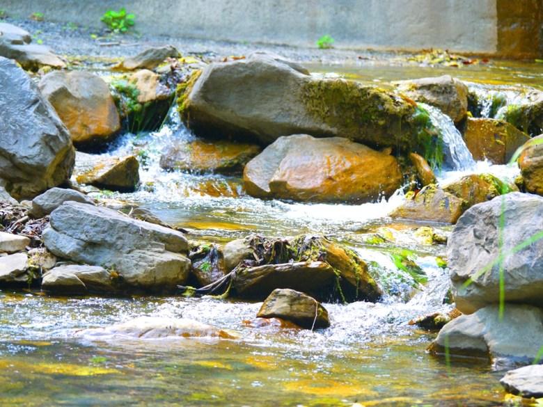 清澈涼爽的溪流 | 奧萬大國家森林遊樂區 | レンアイ | ナントウ | RoundtripJp