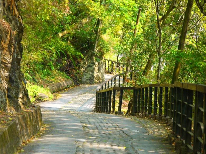 往奧萬大吊橋方向 | 森林公園步道 | Forest Park Trail | 奧萬大國家森林遊樂區 | レンアイ | ナントウ | RoundtripJp