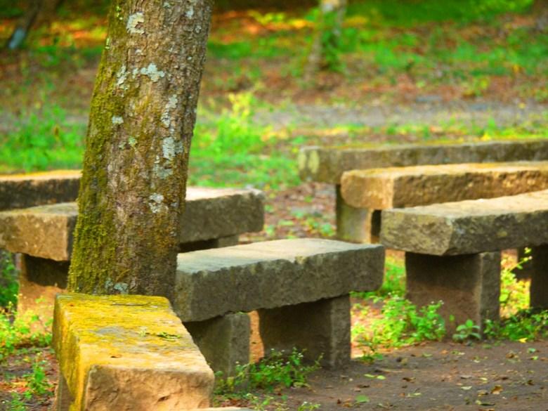森林教室 | Forest classroom | 大自然的教室 | 奧萬大國家森林遊樂區 | レンアイ | ナントウ | 巡日旅行攝