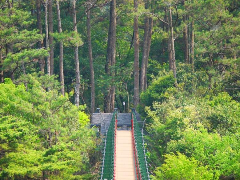 奧萬大吊橋 | 松林區 | 奧萬大國家森林遊樂區 | レンアイ | ナントウ | RoundtripJp