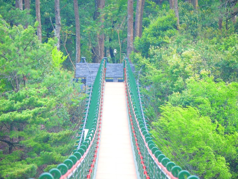 被森林環抱的奧萬大吊橋 | Aowanda Suspension Bridge | 奧萬大國家森林遊樂區 | レンアイ | ナントウ | 巡日旅行攝