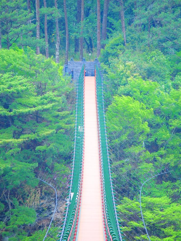 俯瞰奧萬大吊橋 | 壯觀高聳 | 奧萬大國家森林遊樂區 | レンアイ | ナントウ | RoundtripJp