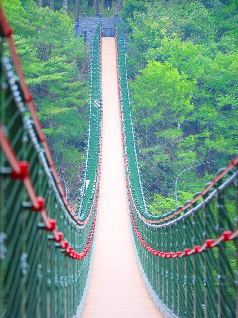 超長的奧萬大吊橋 | 氣勢磅礡 | 奧萬大國家森林遊樂區 | レンアイ | ナントウ | 巡日旅行攝