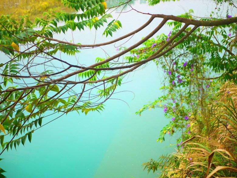 青綠色的溪水   彷彿靜岡井川的夢の吊橋青い溪流   夢幻的青色色彩   日本味   Takeyama   Zhushan   Nantou   巡日旅行攝