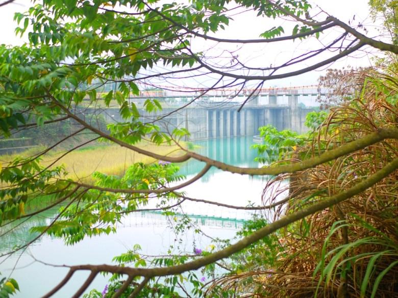 夢之吊橋   桶頭吊橋   桶頭攔河堰   清水溪   青い溪流   日本味   Takeyama   Zhushan   Nantou   RoundtripJp