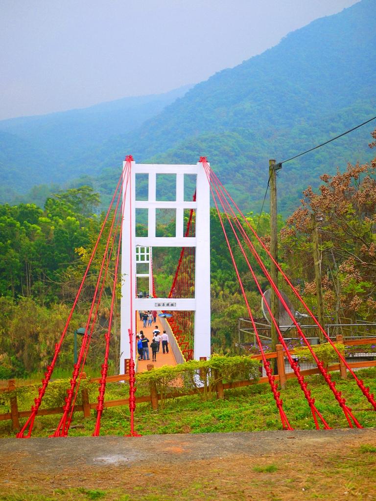 桶頭吊橋入口全貌   台灣旅人   清水溪   自然景觀   日本味   Takeyama   Zhushan   Nantou   RoundtripJp