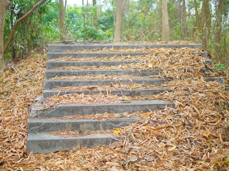 通往神社本殿階梯的遺跡 | 新化神社遺跡 | 虎頭埤風景區內 | シンホワ | たいなんし | 巡日旅行攝