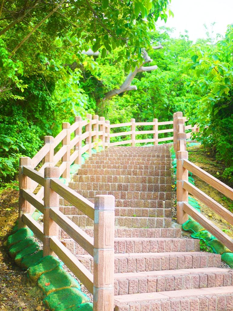 往崎頂觀景台方向 | チーディン | ジューナン | ミアオリー | 巡日旅行攝