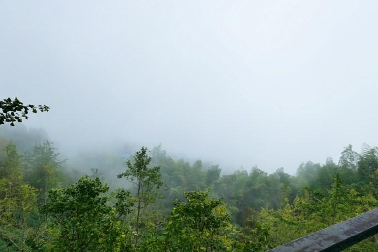 從火鍋店家陽台遠眺的山林景緻   雲霧飄渺   台灣山林之美   銀杏森林   ルーグー   Lugu   Nantou   Taiwan   和風臺灣   巡日旅行攝   RoundtripJp