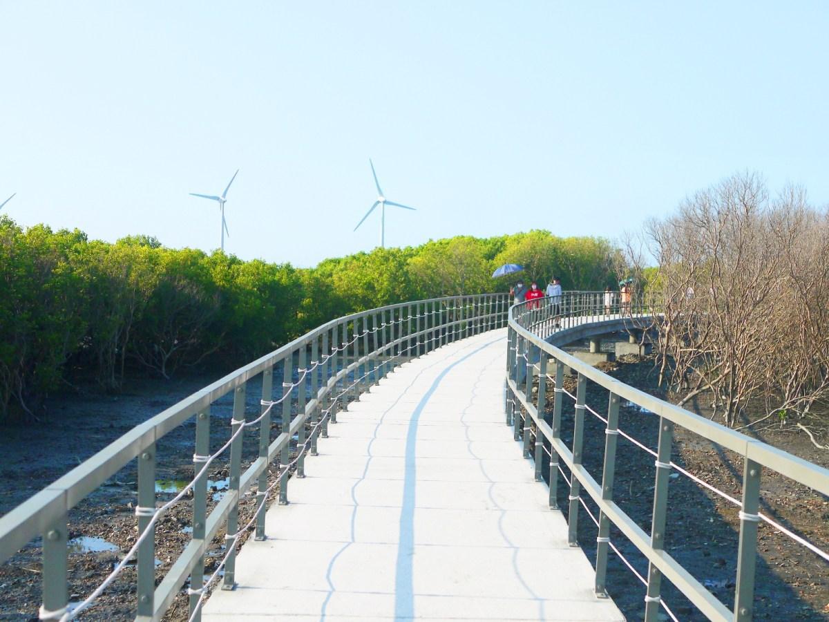 絕美白色步道 | 台灣旅人 | 紅樹林 | 風車 | 海笳冬 | 水筆仔 | ファンユエン | ほうえん | ジャンホワ | しょうか | Wafu Taiwan | 巡日旅行攝 | RoundtripJp