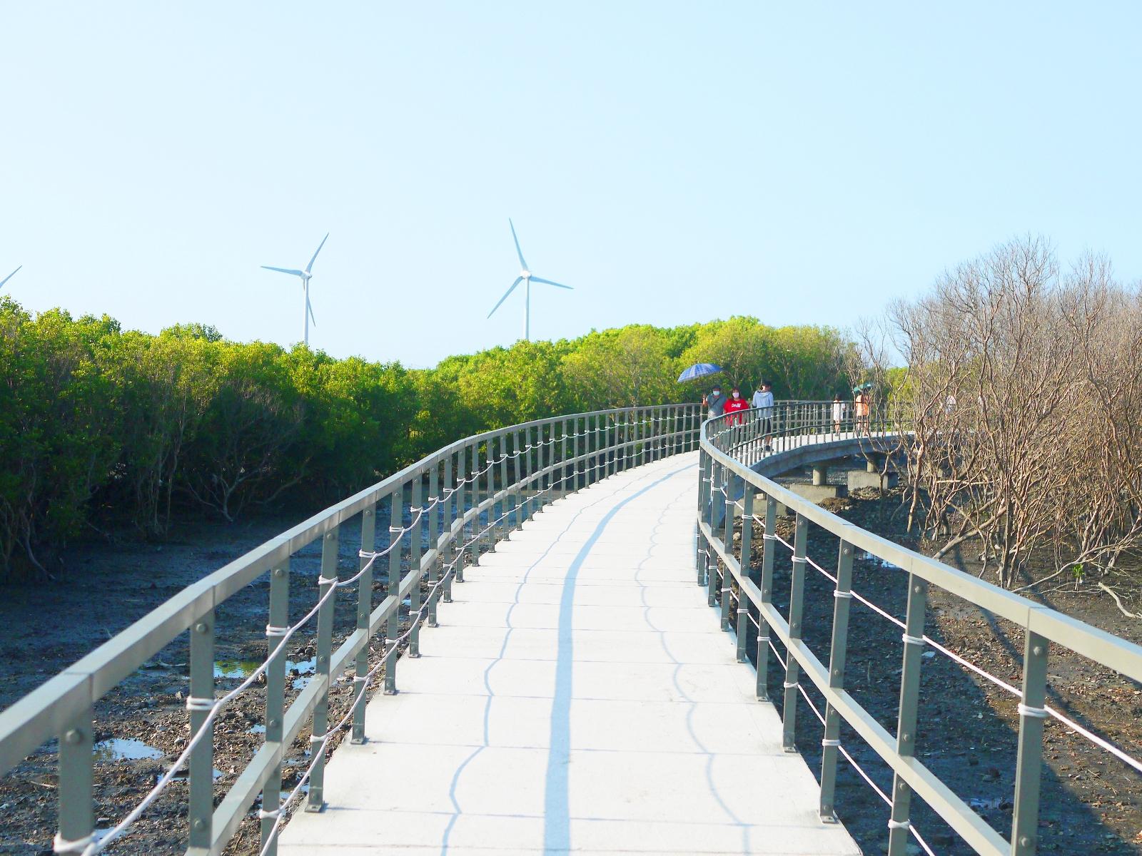絕美白色步道   台灣旅人   紅樹林   風車   海笳冬   水筆仔   ファンユエン   ほうえん   ジャンホワ   しょうか   Wafu Taiwan   巡日旅行攝   RoundtripJp