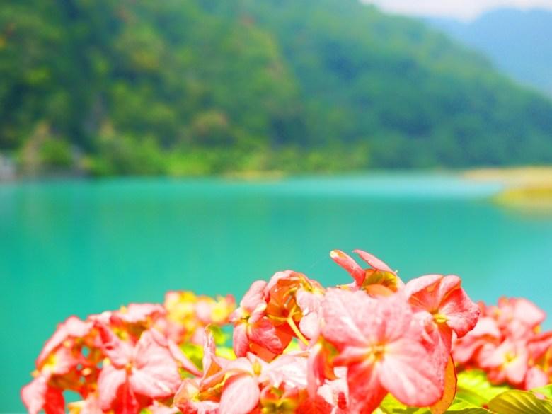 自然的紅 | 大自然的綠 | 大自然的青 | 士林攔河堰 | Taian | Miaoli | 和風巡禮 | 巡日旅行攝 | RoundtripJp