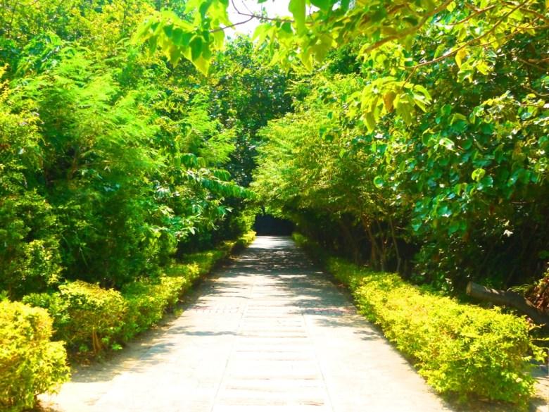 往2號舊隧道入口前林蔭步道   綠樹扶疏   清幽步道   ホウロン   こうりゅう   ミアオリー   Wafu Taiwan   巡日旅行攝   RoundtripJp