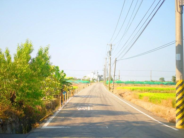 龍貓隧道無患子森林入口對面車道   人煙稀少   遠離都市塵囂   Houli   Taichung   和風巡禮   巡日旅行攝   RoundtripJp