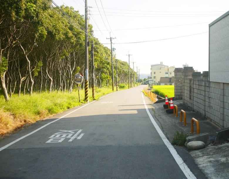 龍貓隧道無患子森林道路   一大片無盡的森林   Houli   Taichung   Wafu Taiwan   巡日旅行攝   RoundtripJp