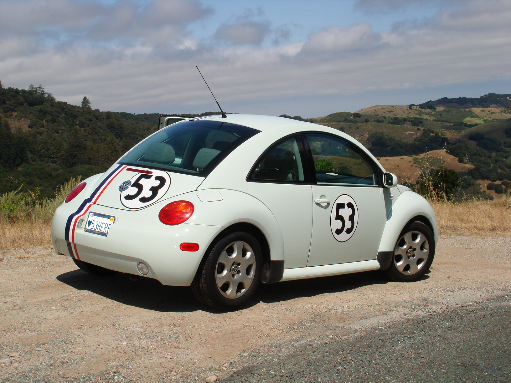Herbie overlooks the Carmell Valley
