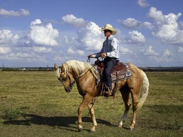 cowboy-746992