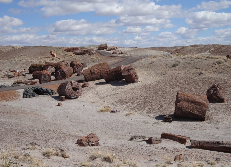 petrified-forest-national-park-1899442