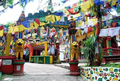 routemate-darjeeling-student-tour