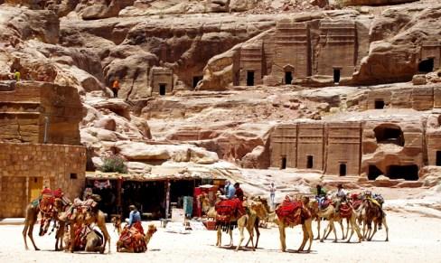 camel station