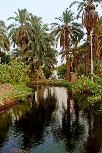 Amazing surrounding around Nubian Villages