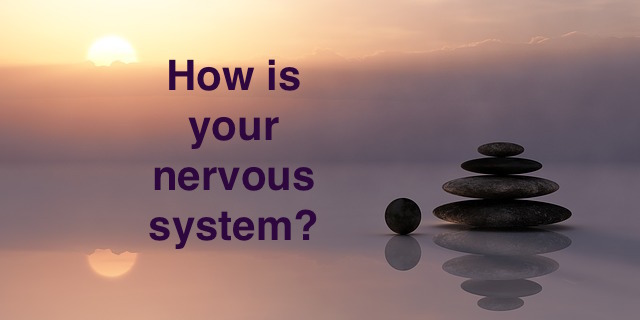 How is your nervous system?