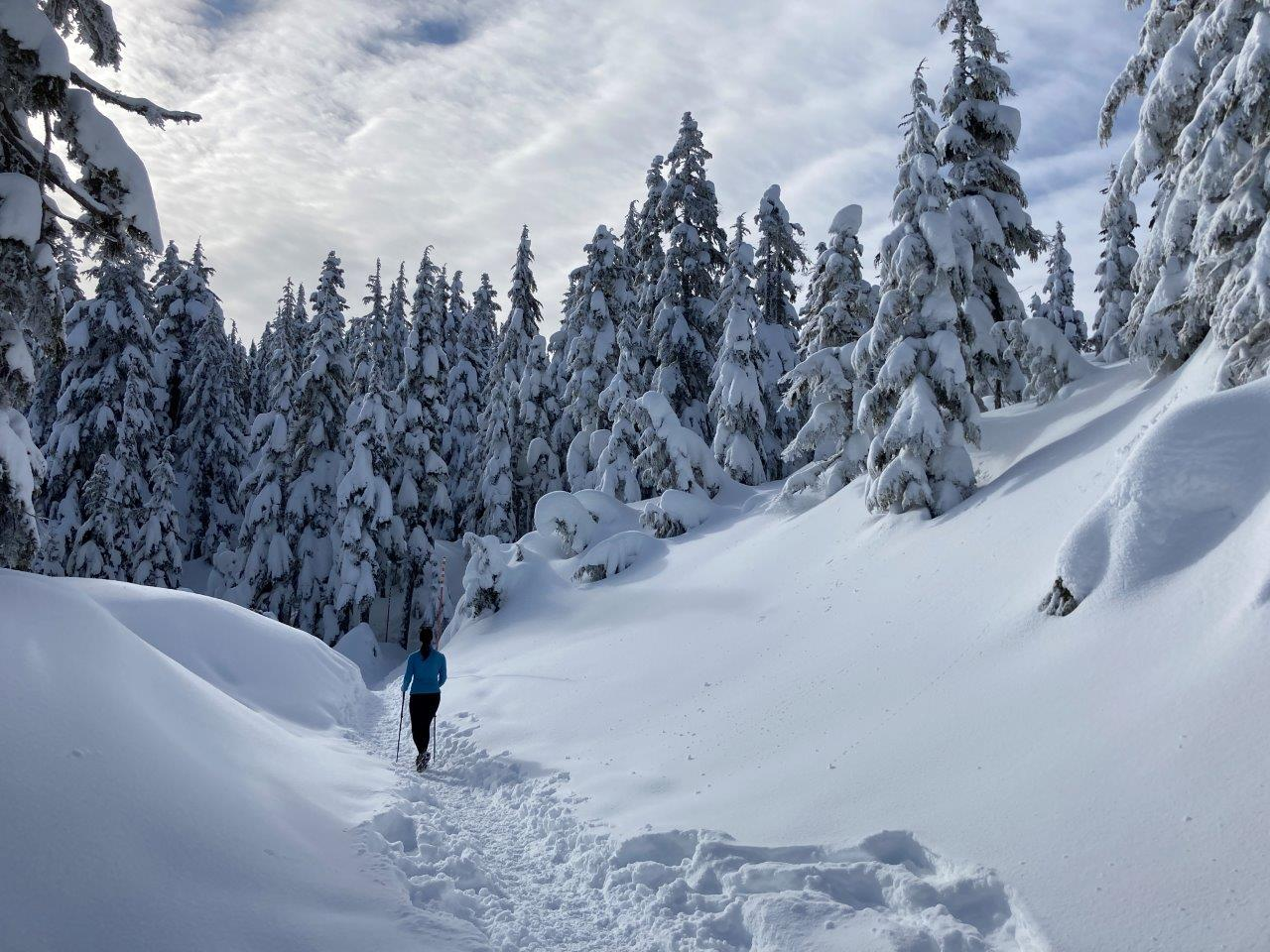 Cypress Mountain Winter Hiking