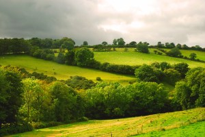 green_fields_of_england