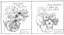 https://rowanlyster.wordpress.com/2015/12/27/the-holly-ivy-and-daffodils/