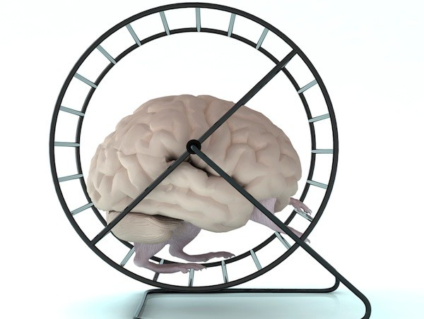 photoshopped cartoon like imagine of a brain with legs running on a hamster's exercise wheel