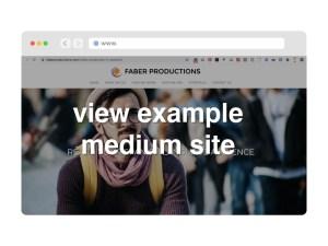view example berkeley micro website design